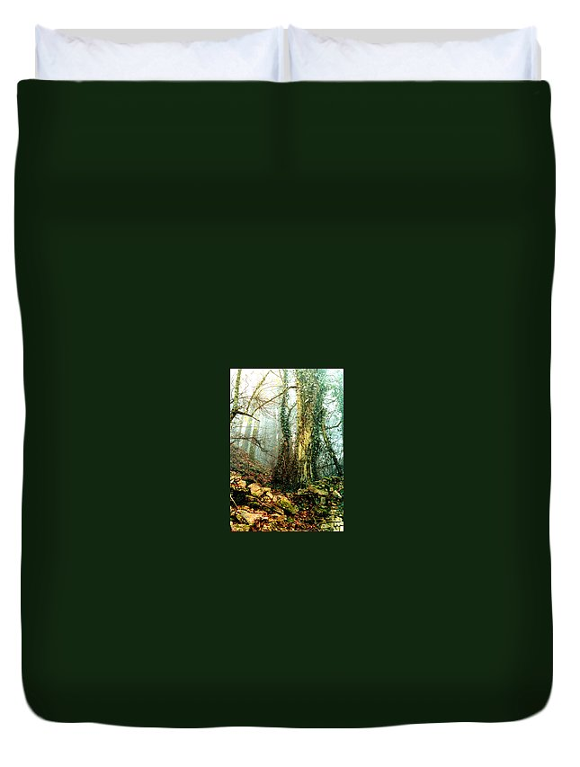 Ivy Duvet Cover featuring the photograph Ivy In The Woods by Nancy Mueller