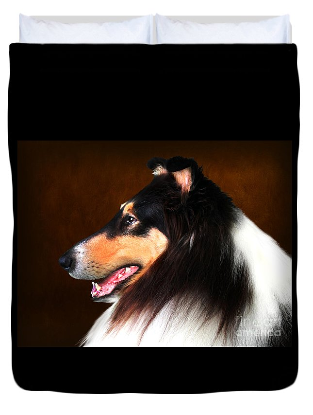 Dog Duvet Cover featuring the photograph Black Jack- Collie by Sandra Moore