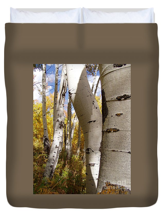 Trees Duvet Cover featuring the photograph Jackson Hole Wyoming by Amanda Barcon