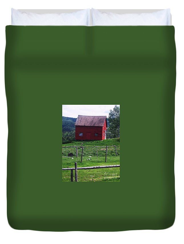 Photograph Newfoundland Jackson Cove Boat Grass Duvet Cover featuring the photograph Jackson's Cove by Seon-Jeong Kim