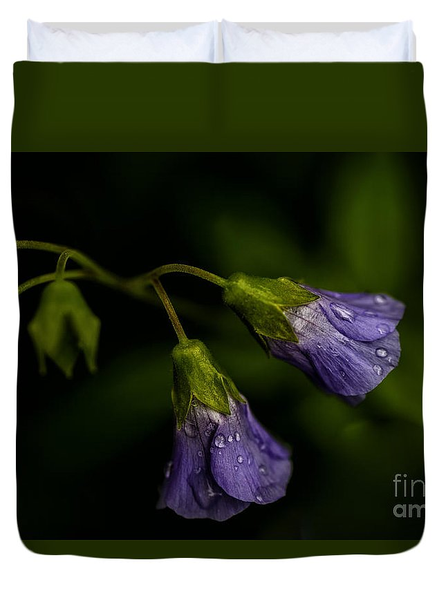 Jacobs Ladder Duvet Cover featuring the photograph Jacobs Ladder by Thomas R Fletcher