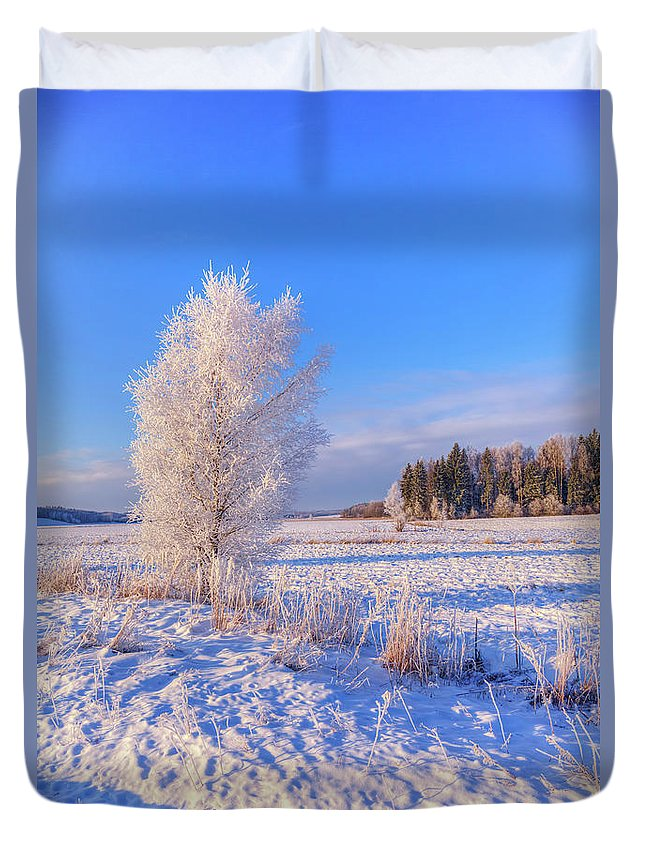 Atmosphere Duvet Cover featuring the photograph January Day by Veikko Suikkanen