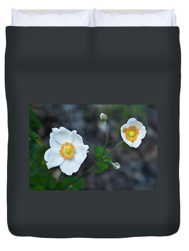 Japanese Duvet Cover featuring the photograph Japanaese Anemone by Douglas Barnett