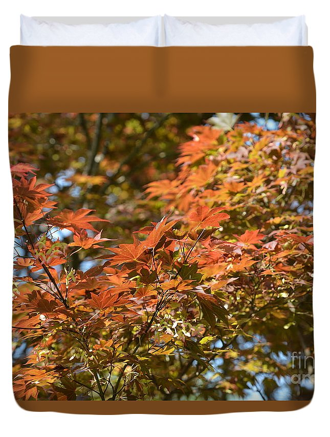 Japanese Maple Beauty Duvet Cover featuring the photograph Japanese Maple Beauty by Maria Urso
