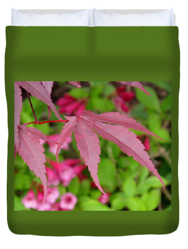 Japanese Maple Duvet Cover featuring the photograph Japanese Maple by Ian MacDonald