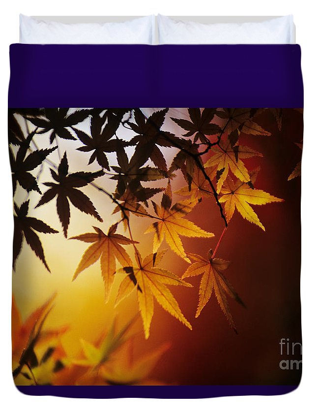 Allan Seiden Duvet Cover featuring the photograph Japanese Maple Leaf by Allan Seiden - Printscapes