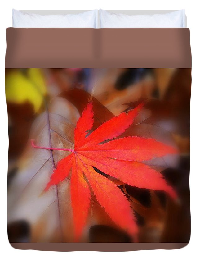 Autumn Image Duvet Cover featuring the photograph Japanese Maple Leaf by Marla McPherson