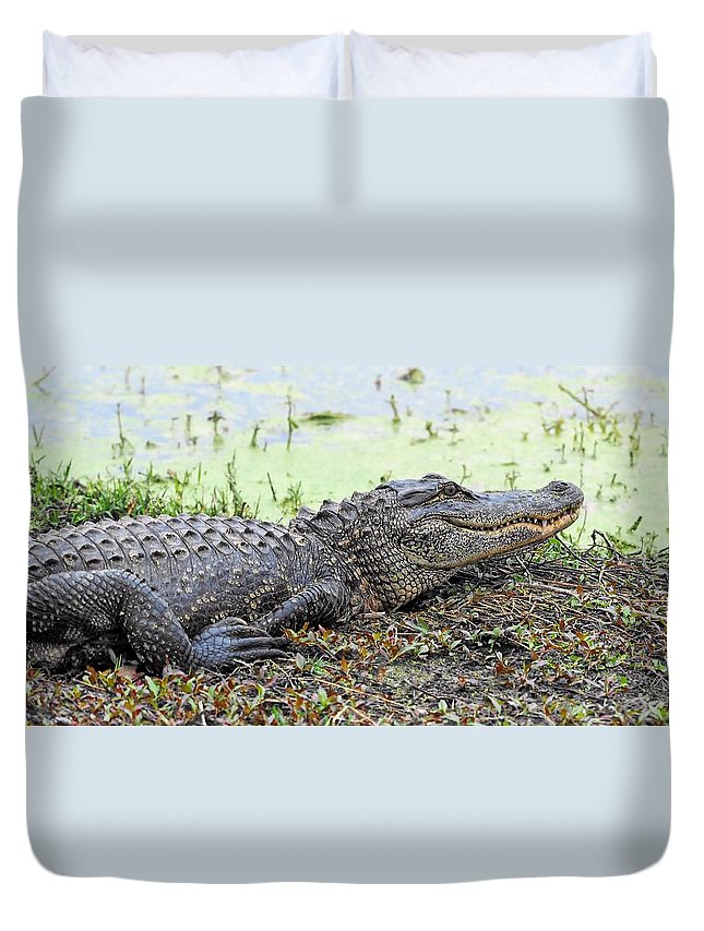 Jarvis Creek Gator Duvet Cover featuring the photograph Jarvis Creek Gator by William Bosley
