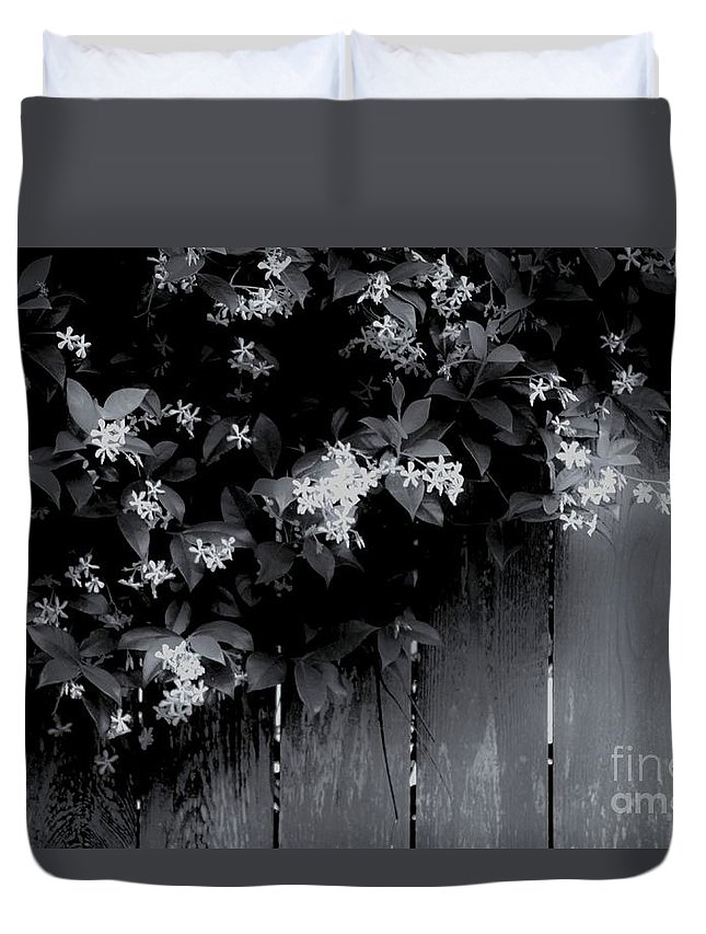 Negative Space Duvet Cover featuring the photograph Jasmine by Sidney Spires-Mangum