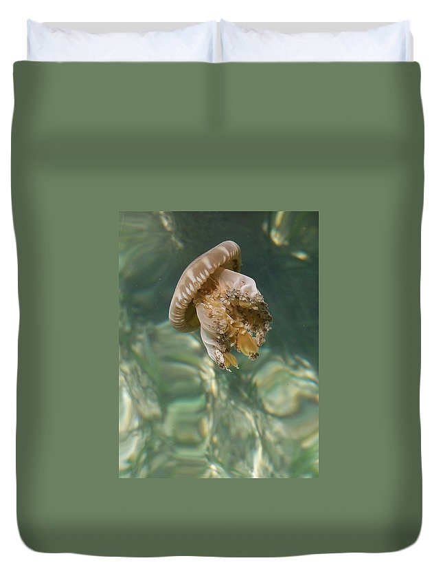 Jelly Duvet Cover featuring the photograph Jelly Belly by Gale Cochran-Smith