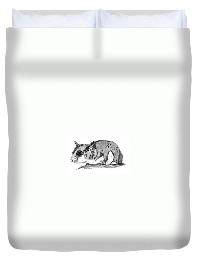 Sugar Glider Duvet Cover featuring the drawing Joey by Kristen Wesch