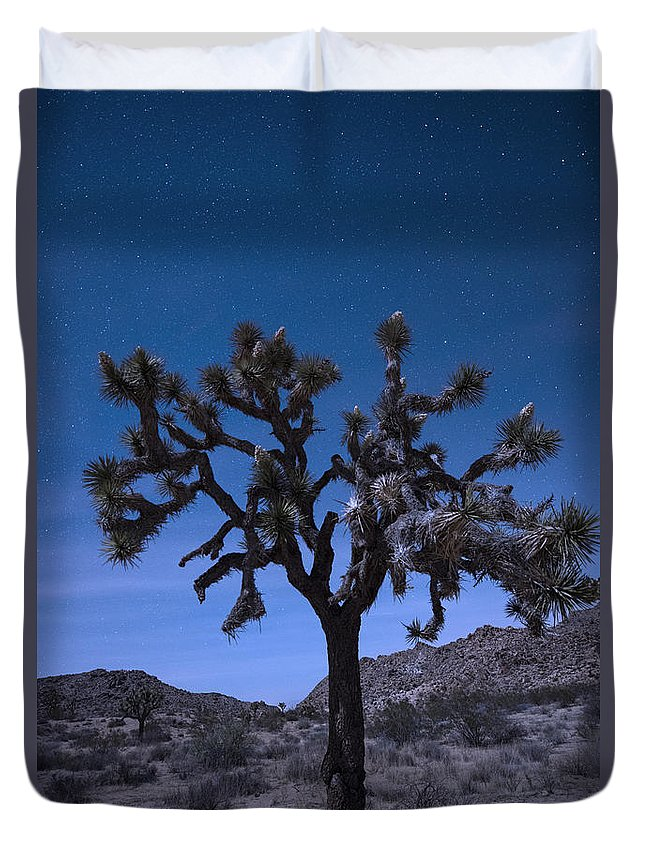 America Duvet Cover featuring the photograph Joshua Tree by Juli Scalzi