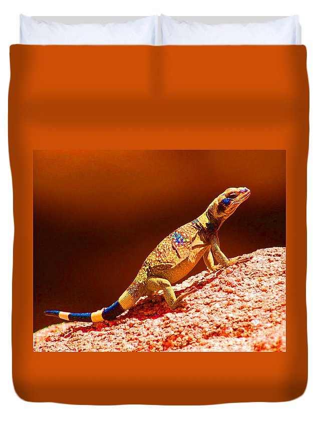 Lizard Duvet Cover featuring the photograph Joshua Tree Lizard by John Malmquist