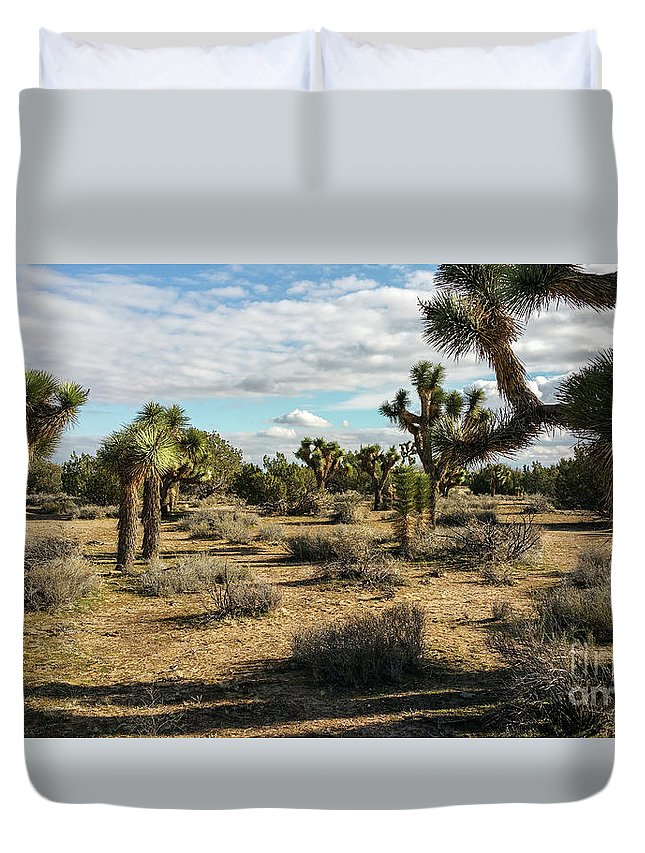 Alone Duvet Cover featuring the photograph Joshua Tree's by Joe Lach