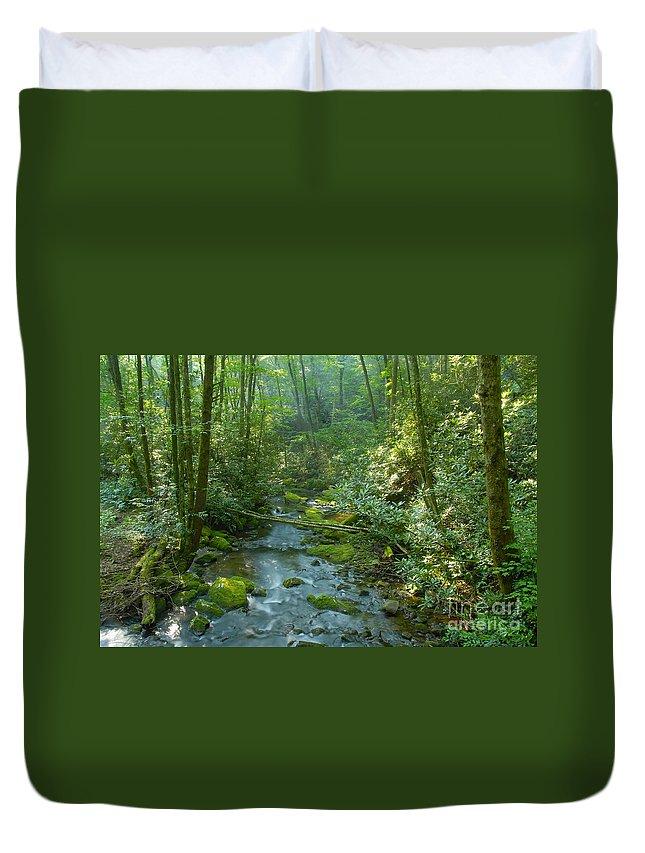 Joyce Kilmer Memorial Forest Duvet Cover featuring the photograph Joyce Kilmer Memorial Forest by David Lee Thompson