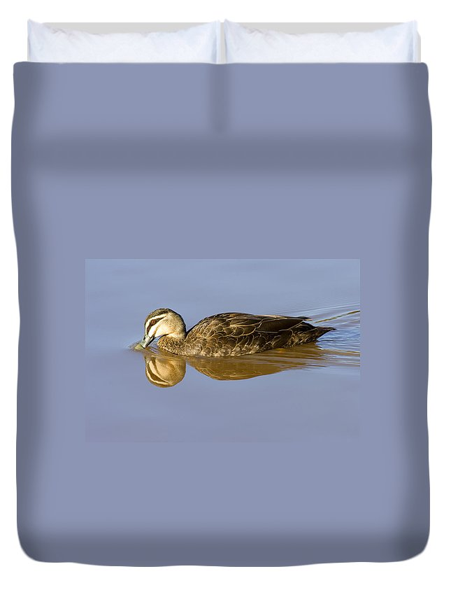 Duck Duvet Cover featuring the photograph Just A Sip by Mike Dawson