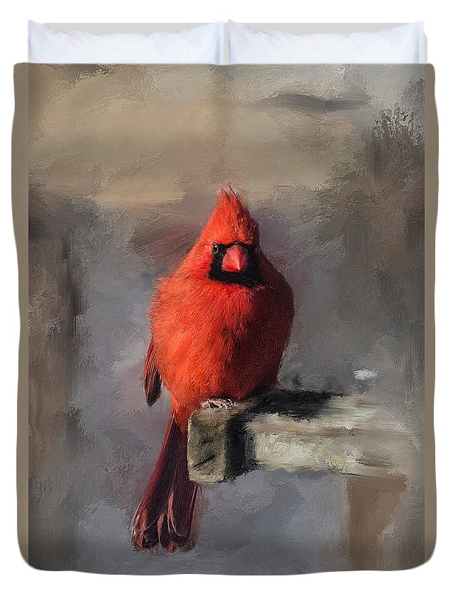 Cardinal Duvet Cover featuring the digital art Just An Ordinary Day by Lois Bryan