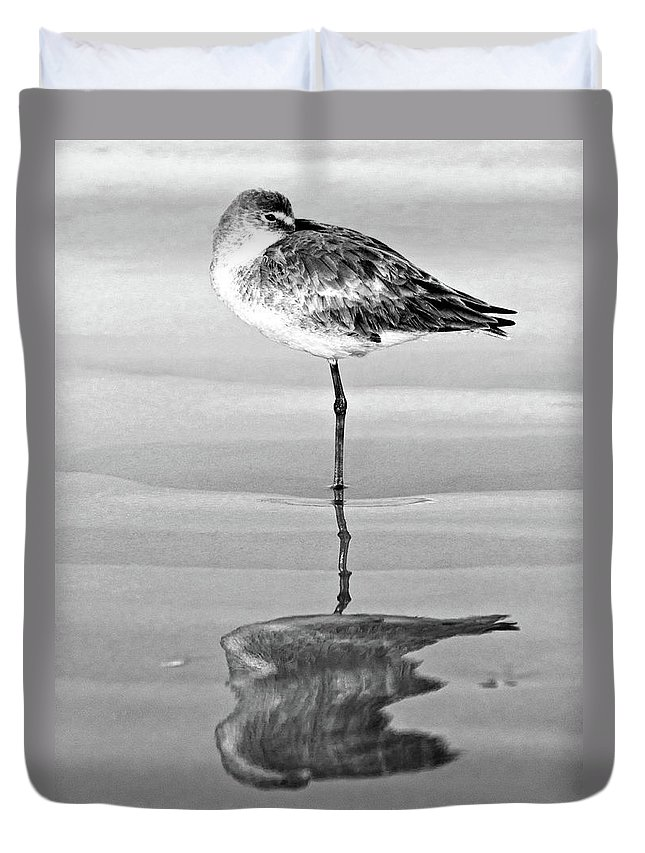 Willet Duvet Cover featuring the photograph Just Being Coy - Bw by Christopher Holmes