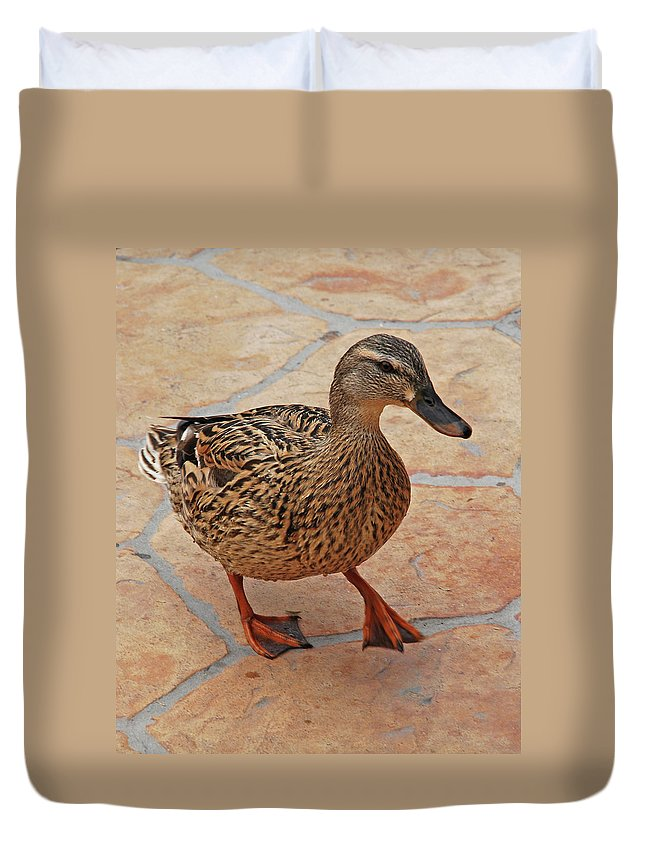 Duvet Cover featuring the photograph Just Ducky by Carol Eliassen