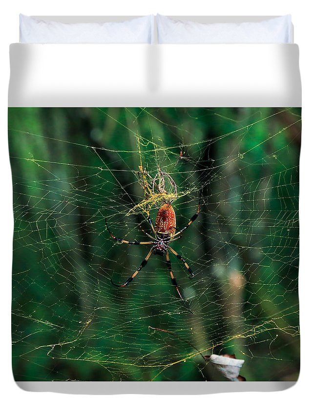 Spider Duvet Cover featuring the photograph Just Hangin' Around by Christopher L Thomley