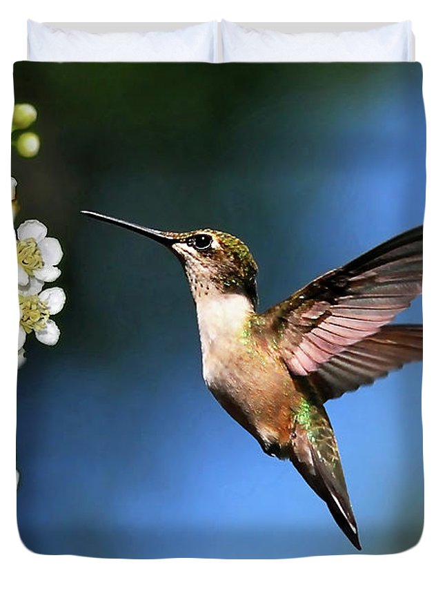 Beautiful Hummingbird Duvet Covers