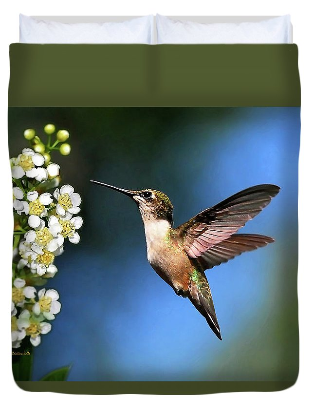Hummingbird Duvet Cover featuring the photograph Just Looking by Christina Rollo