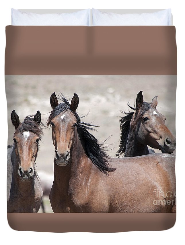 Mustang Duvet Cover featuring the photograph Just Looking by Lula Adams