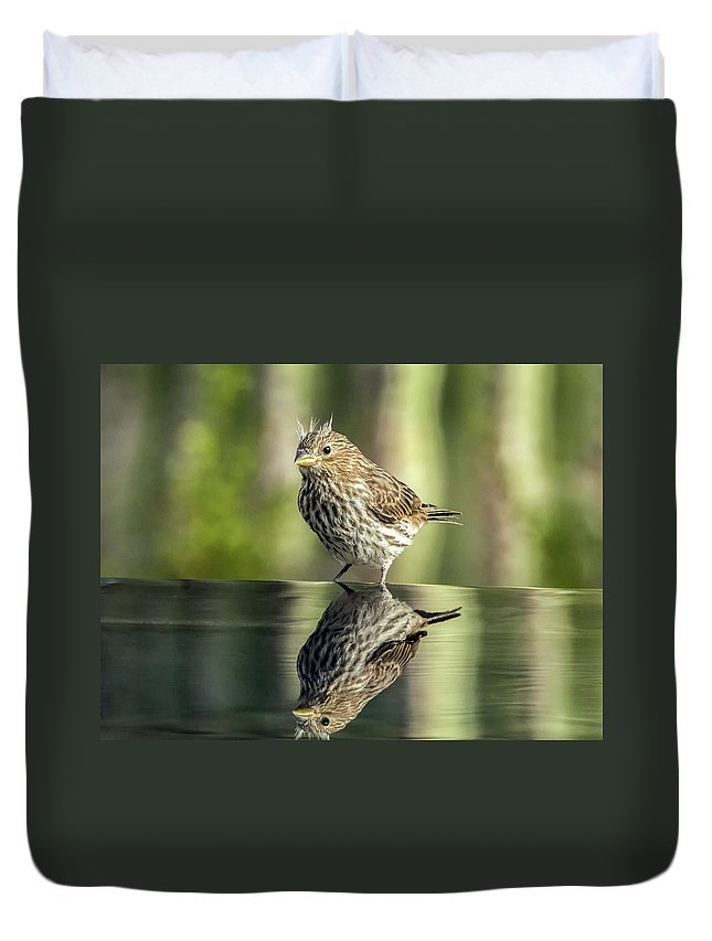 House Duvet Cover featuring the photograph Juvenile House Sparrow 0689 by Tam Ryan