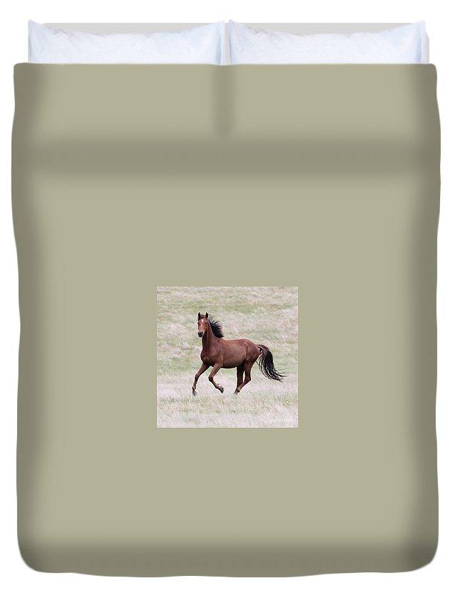 Kaimanawa Duvet Cover featuring the photograph Kaimanawa Stallion by Judy Watson