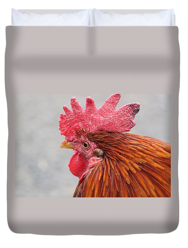 Rooster Duvet Cover featuring the photograph Kauai Rooster by Lauri Novak