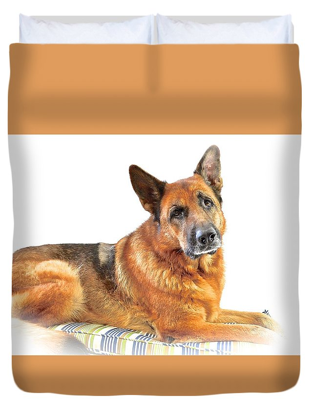 German Shepherd Dog Duvet Cover featuring the photograph Kayla In The Studio by Danielle Sigmon