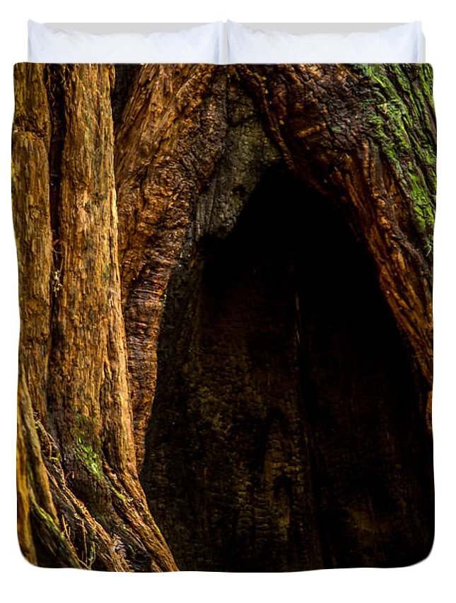 Woods Duvet Cover featuring the photograph Keebler Cove by Tony Noto