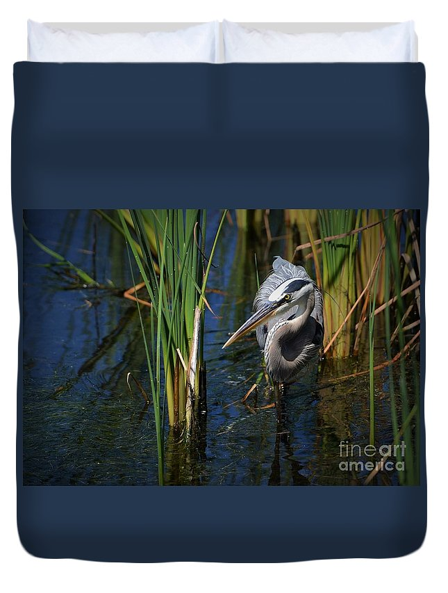 Heron Duvet Cover featuring the photograph Keeping An Eye Out For Fish by Pamela Blizzard
