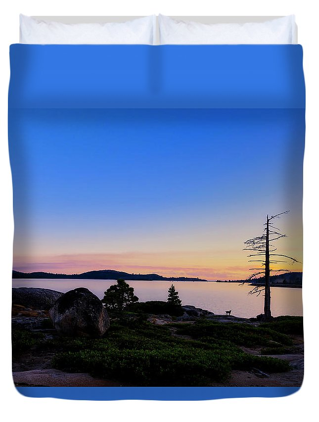 American Staffordshire Duvet Cover featuring the photograph Keeping Watch by Jim Thompson