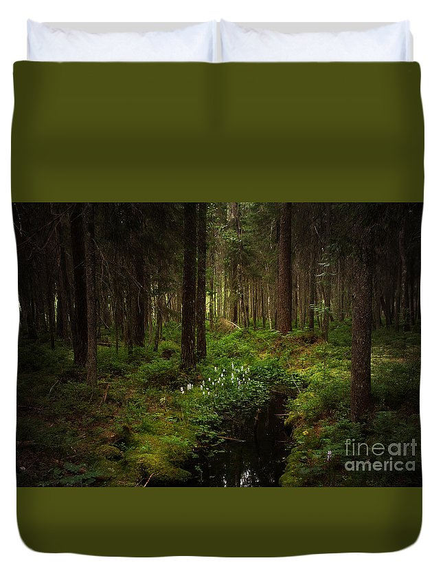 Tree Duvet Cover featuring the photograph Keys In The Woods by Rikard Strand