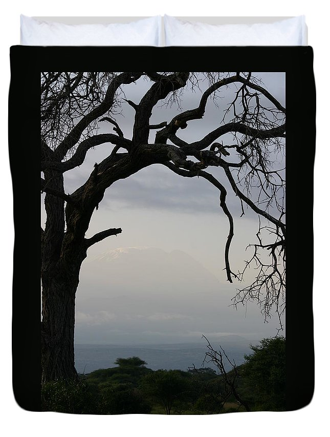 Landscape Duvet Cover featuring the photograph Kilimanjaro by Christine Higgins