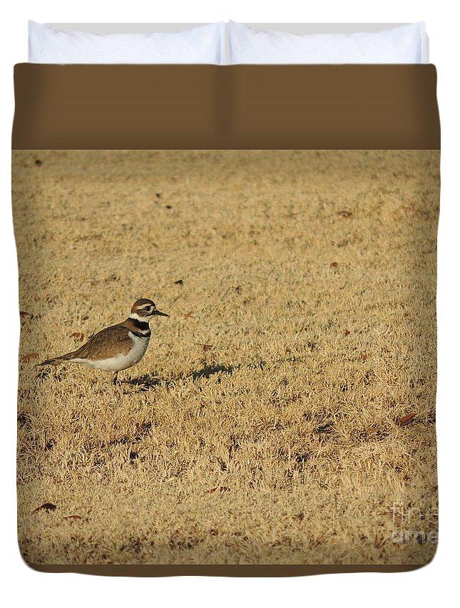Killdeer Duvet Cover featuring the photograph Killdeer In The Grass #3 by Jim Williams Jr