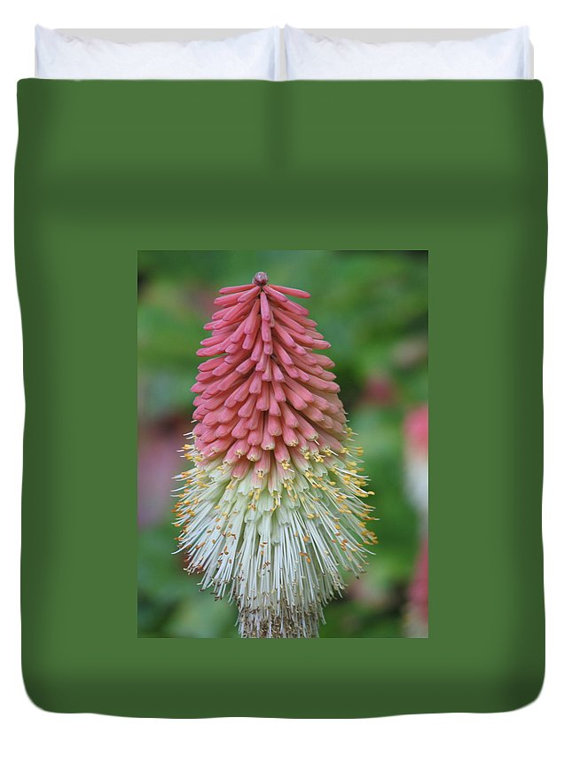 Flower Duvet Cover featuring the photograph Kilmokea by Kelly Mezzapelle