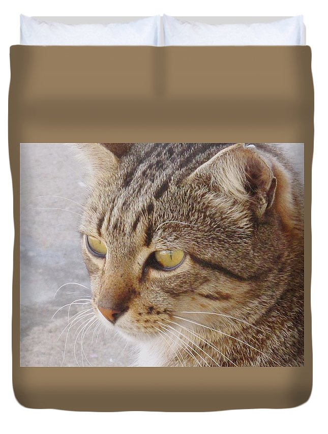 Cat Duvet Cover featuring the photograph King Cat by Ian MacDonald