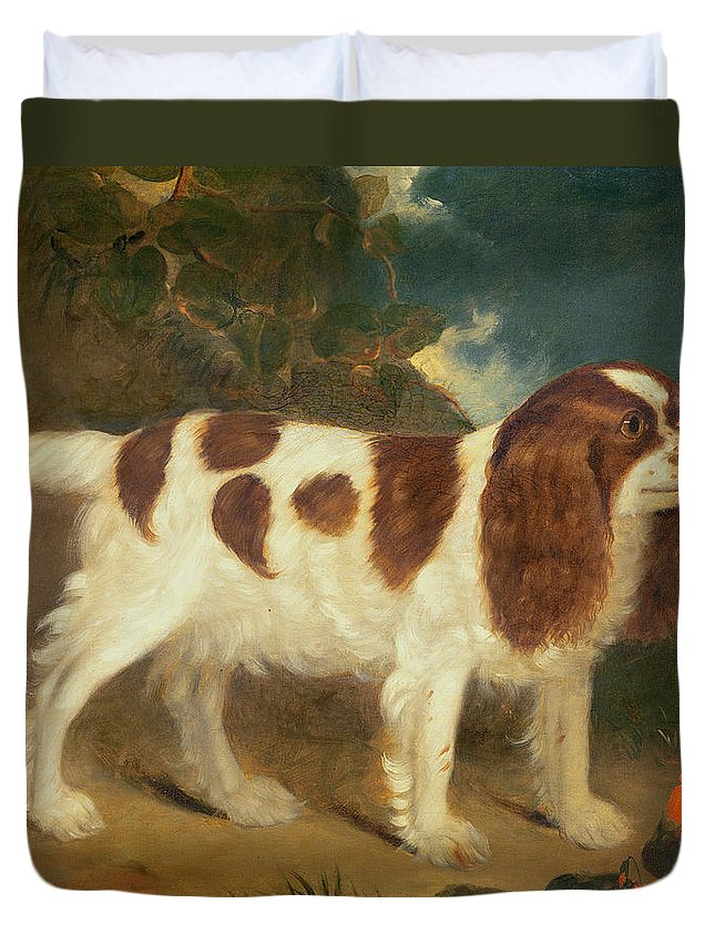 King Charles Spaniel Duvet Cover featuring the painting King Charles Spaniel by William Thompson
