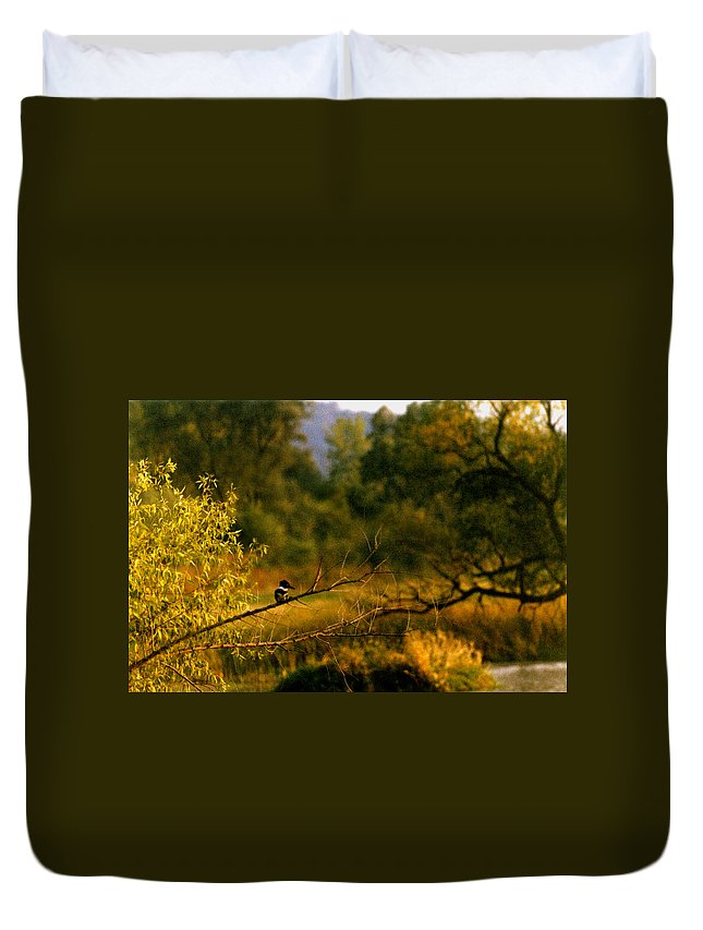 Landscape Duvet Cover featuring the photograph King Fisher by Steve Karol