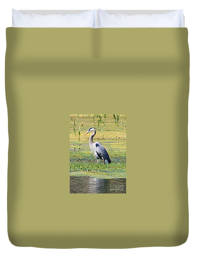 Great Blue Heron Duvet Cover featuring the photograph King Of The Marsh by Carol Groenen