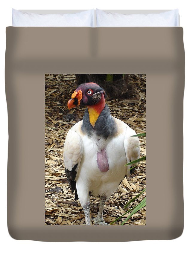 Vulture Duvet Cover featuring the photograph King Vulture by Susan Baker