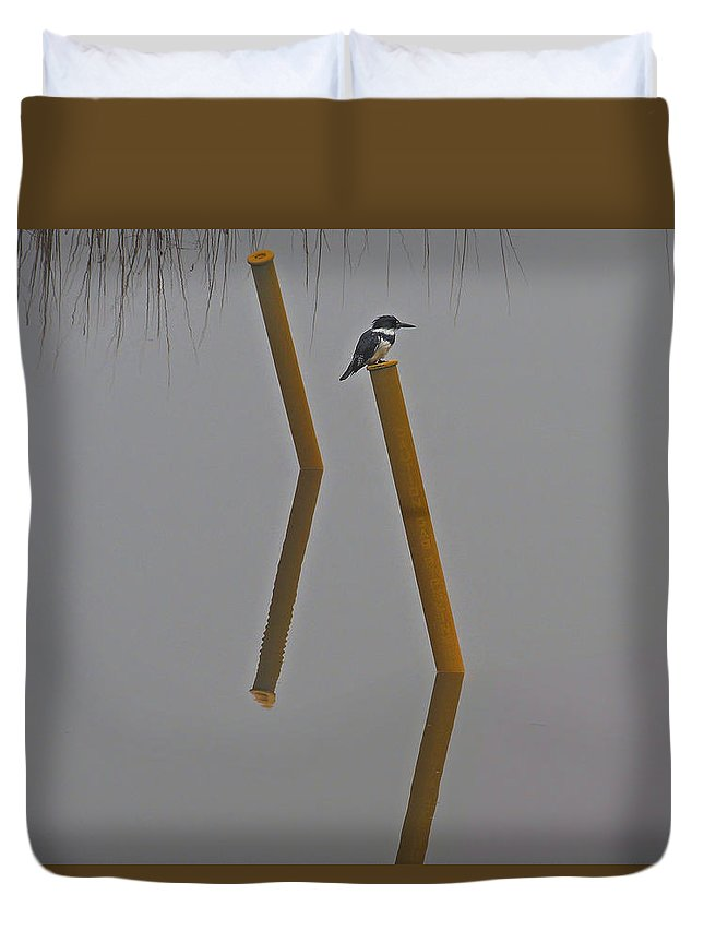 Nature Duvet Cover featuring the photograph Kingfisher On A Pole by Laura Ragland