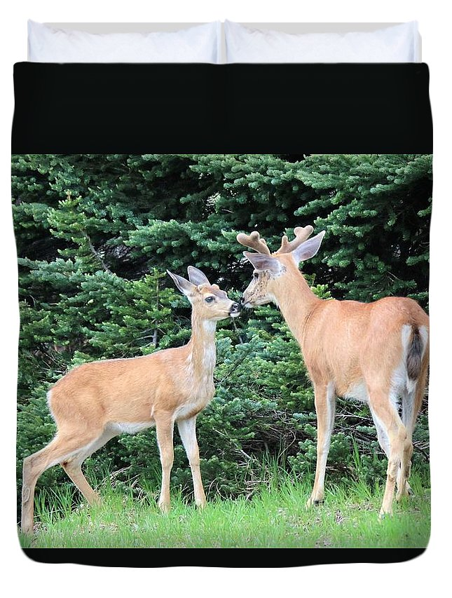 Nature Duvet Cover featuring the photograph Kiss by Lisa Spero