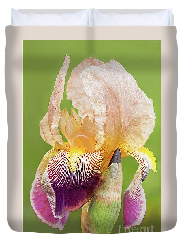 Iris Duvet Cover featuring the photograph Kissed By The Rain by Regina Geoghan