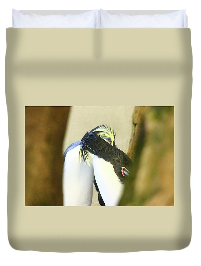 Duvet Cover featuring the photograph Kissing Pennguins by Anup Kumar Chalamalla