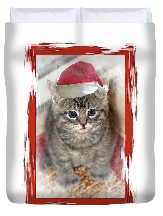 Recent Duvet Cover featuring the photograph Kitten Playing Santa by Geraldine Scull