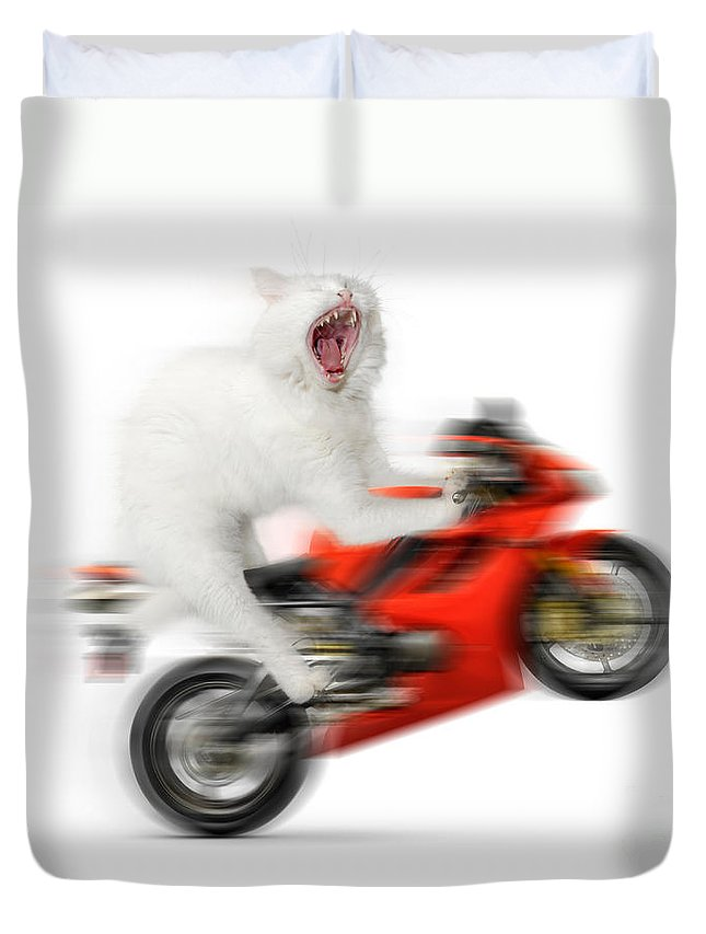 Wheelie Duvet Cover featuring the photograph Kitty On A Motorcycle Doing A Wheelie by Oleksiy Maksymenko