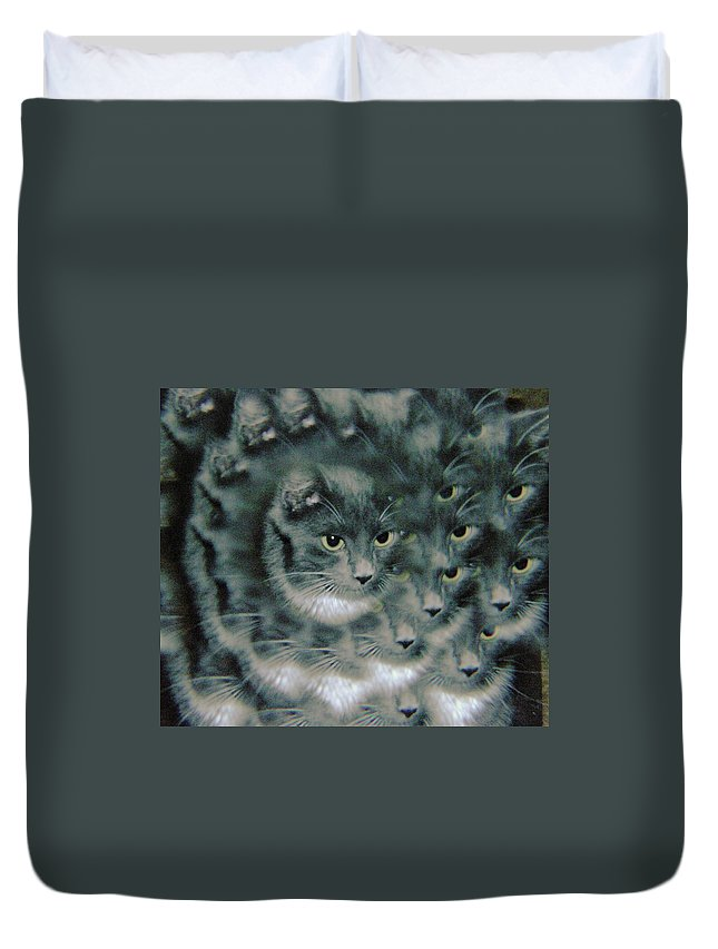 Cats Duvet Cover featuring the photograph Kitty Portrait by Jeff Swan
